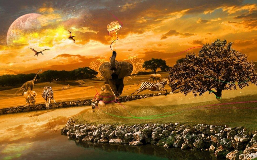 Świadomość Serca oraz Przebudzenie Wielkiego Śniącego – 26 -27 października